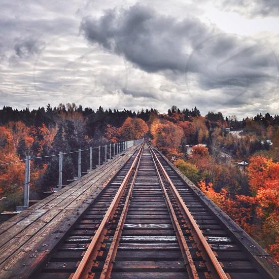 black and brown railroad photo