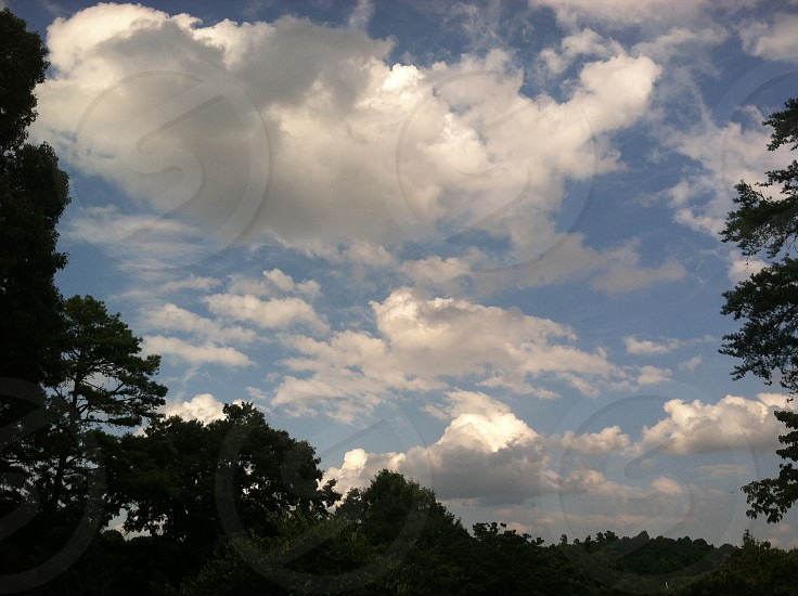 clouds trees silhouette sky blue photo