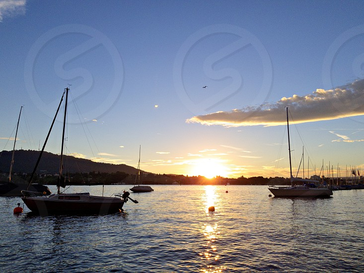 four sailing boats on ocean under blue sky photo