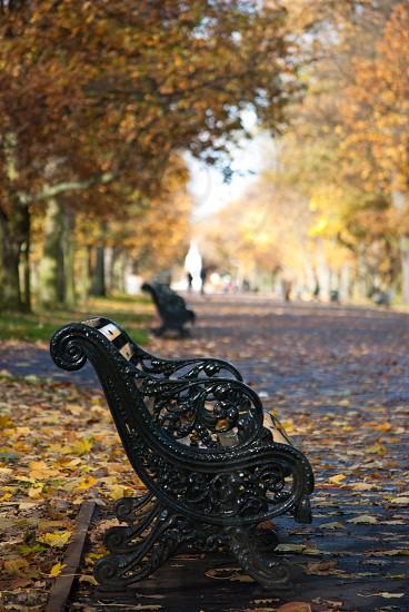London park photo