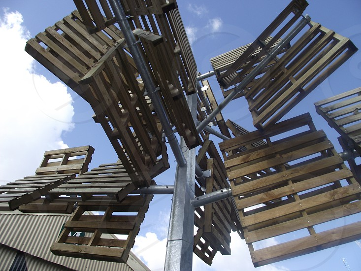 Pattetus radiata. (Pallet tree) Wood and steel. photo