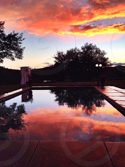 swimming pool next to green tree under orange clouds photo