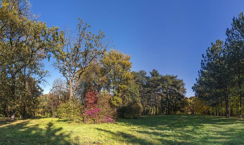 Beautiful autumn trees in Sofiyivka park in the city of Uman Ukraine photo