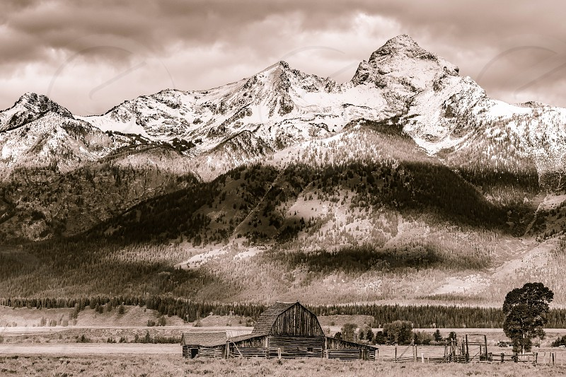 Mormon Row Barn near Jackson Wyoming photo