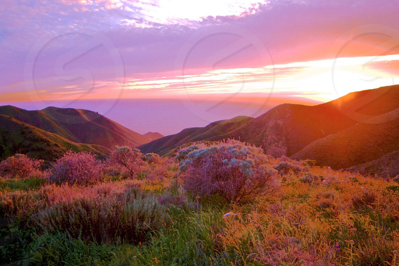 Sunset pink heavenly California ocean sea beauty nature landscape scenic picturesque  photo