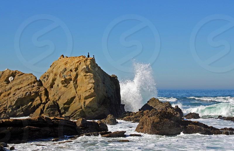 Cormorants perch on a large sea rock along the California coast as a wave breaks against a rock photo