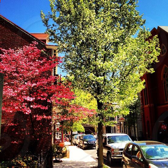 West Broadway - Jim Thorpe PA  photo