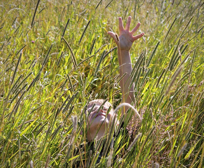 Reaching for natural light photo