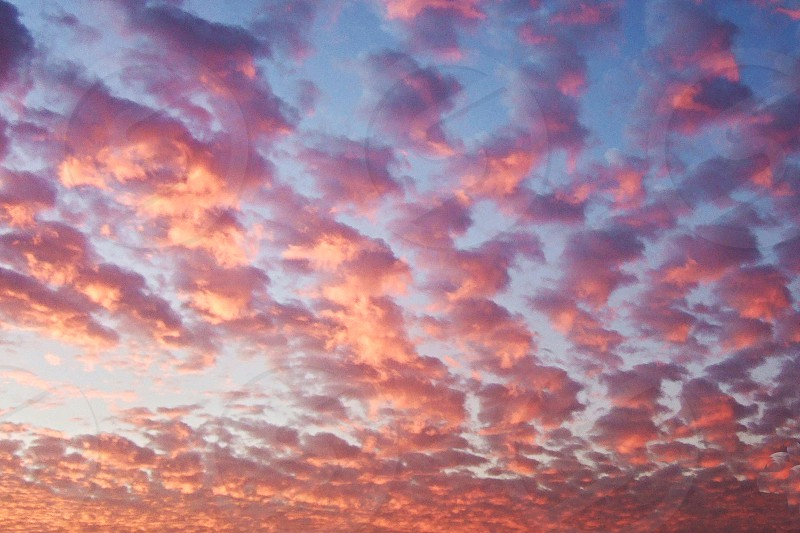 Pink fluffy clouds at sunset or sunrise photo