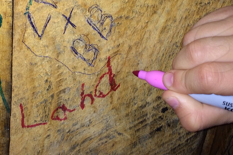 Writing on the wall; pink marker; wood paneling photo
