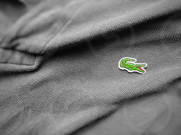 Rome Italy august 3rd 2018: close up view of a Lacoste grey polo shirt. Focus on the sewn crocodile photo