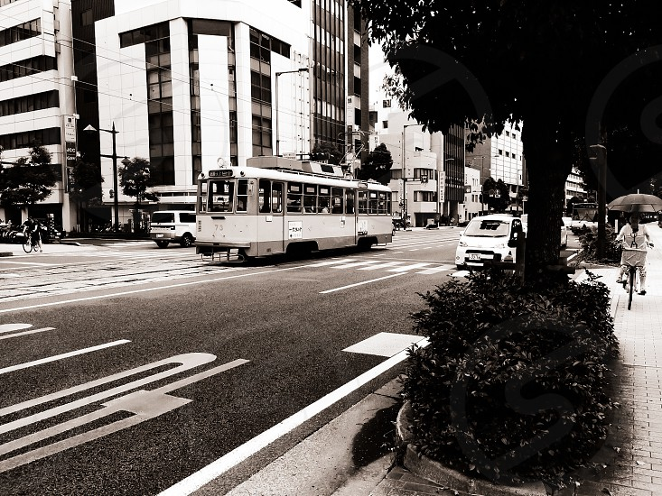 white and grey bus on road photo