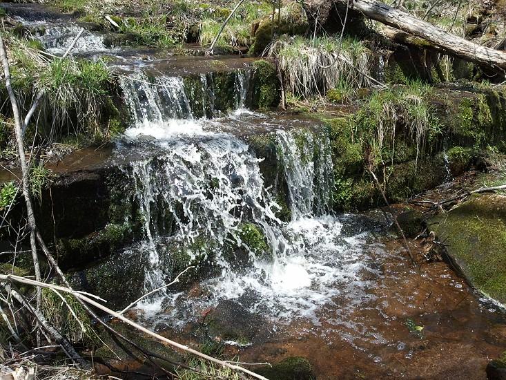 Woods Water Creek Trees Water Fall photo