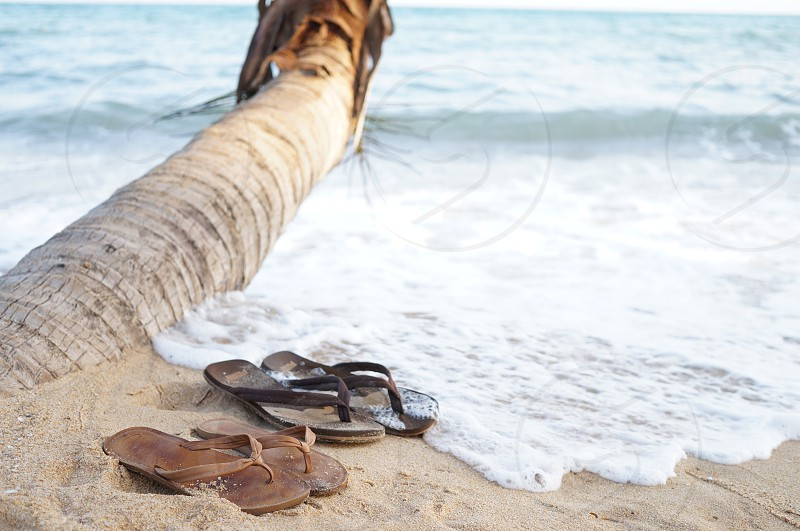 black and brown rubber flip flops on seashore photo