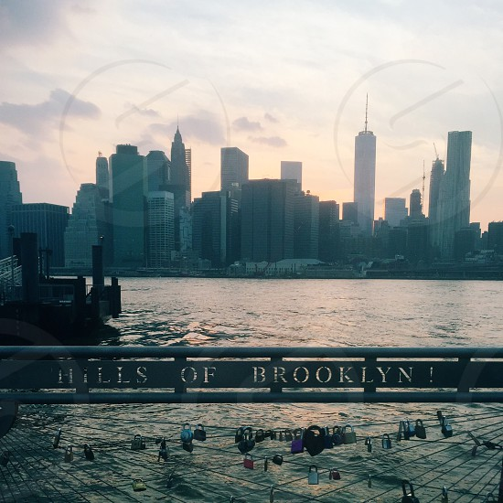 hills of brooklyn 1 board in near body water near concrete high rise building during daytime photo