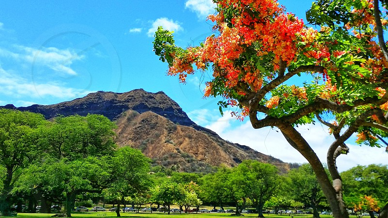 Diamond Head in Honolulu Hawaii. photo