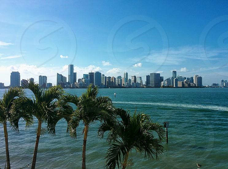Downtown Miami Key Biscayne  photo