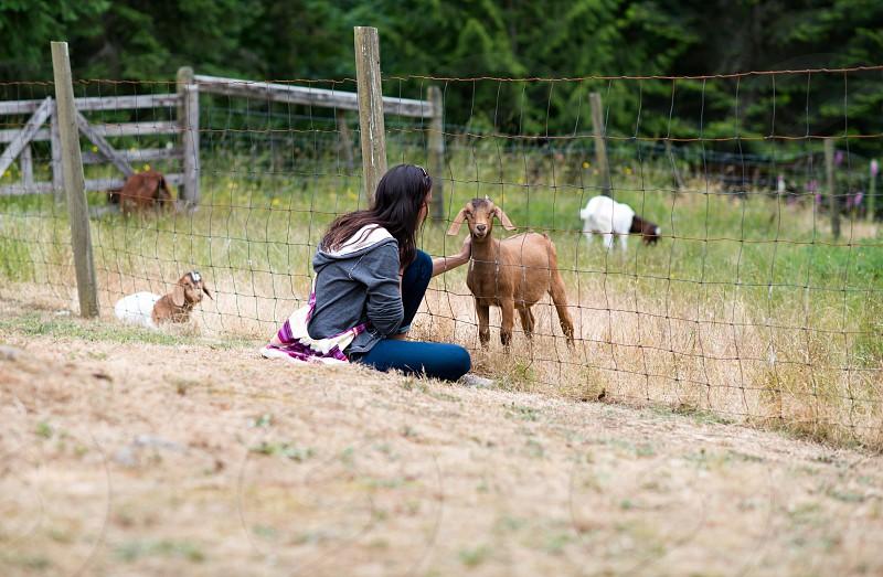 Farm fresh 6 photo