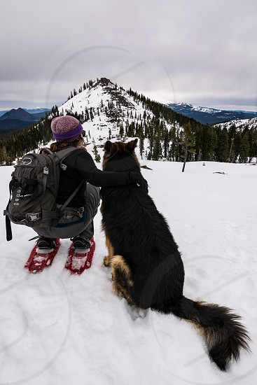dogs dog adventure snow hike snowshoe winter mountains  photo
