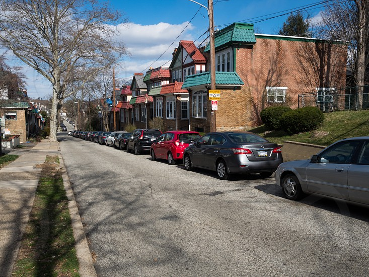 Colorful rowhomes in Mount Airy photo