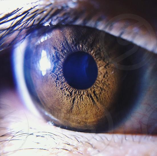 human eye macro photography photo