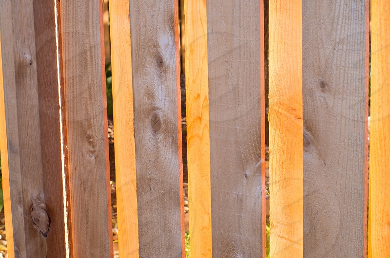 wood grain fence sun glow golden light photo