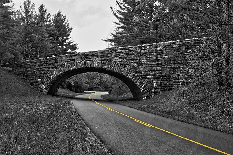 Blue Ridge Parkway - Color Pop Yellow - Black & White photo