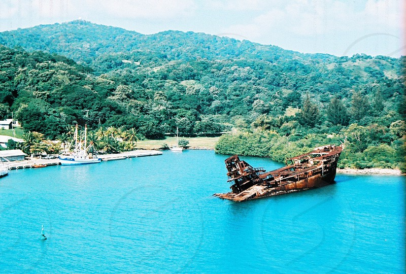 high angle photo of ship wreck surrounded trees with mountain during daytime photo