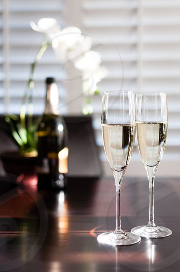 Sparkling wine on home table with orchid photo