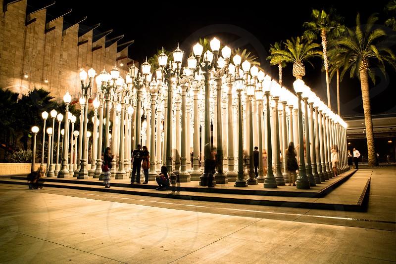 Beautiful lamp light at night in LA photo