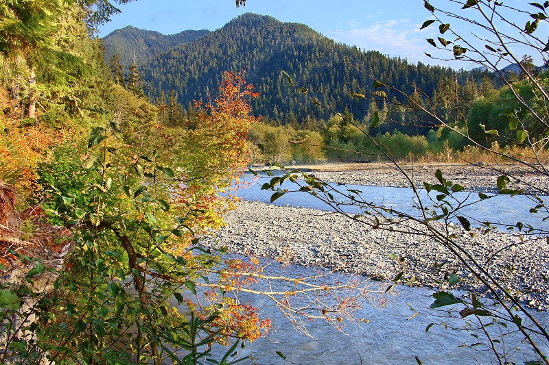 The Hoh River with Mount Olympus in the distance.  Viewed from the Hoh River Trail in Olympic National Park Washington. photo