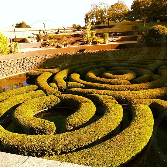 Sculptured garden at The Getty Center photo