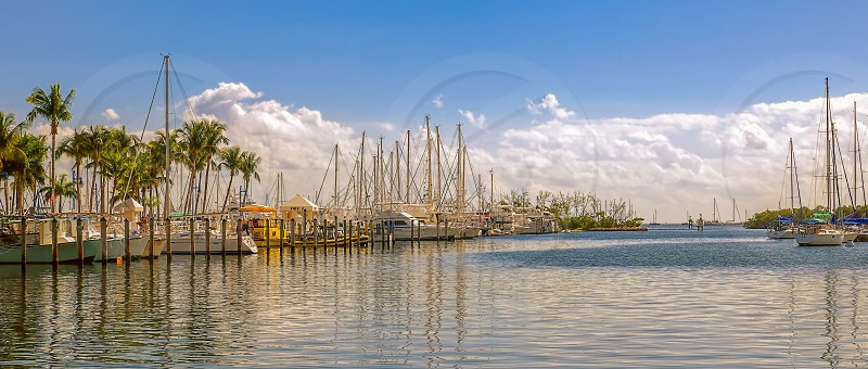Yachts docked in the port at sunny day. Miami. Florida. USA photo