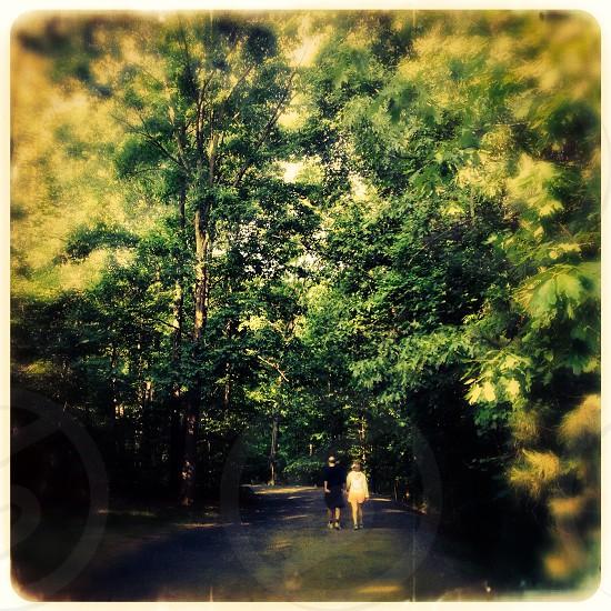 Elderly couple on walk in the woods photo
