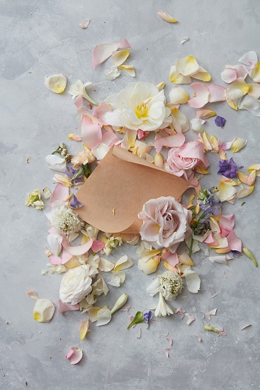 floral frame of pink flowers and a piece of brown paper with space for text on a concrete background flat lay photo