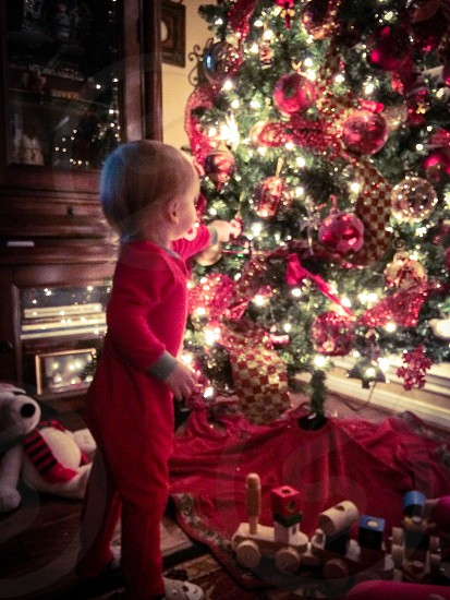 Christmas tree little boy wonder magic awe lights dreamy reds photo