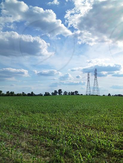 Indiana Farmland photo