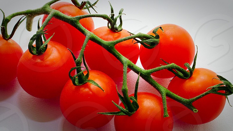red cherry tomatoes photo