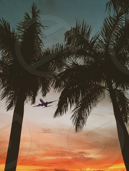 Thru a sunrise #sunrise #photography #amazing   photo