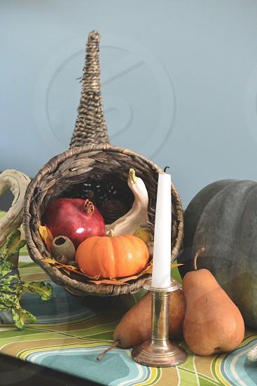 Thanksgiving Cornucopia Pumpkins Gourds Fruit  photo