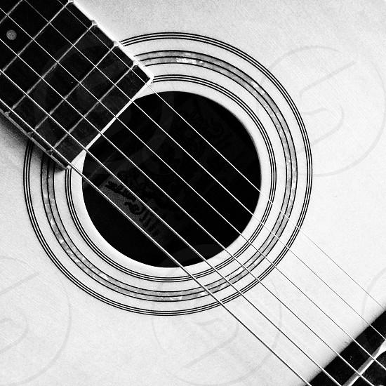 guitar string photo