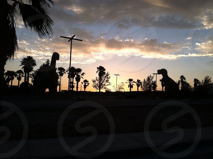 Dinosaurs rule the earth. -Morongo CA   photo