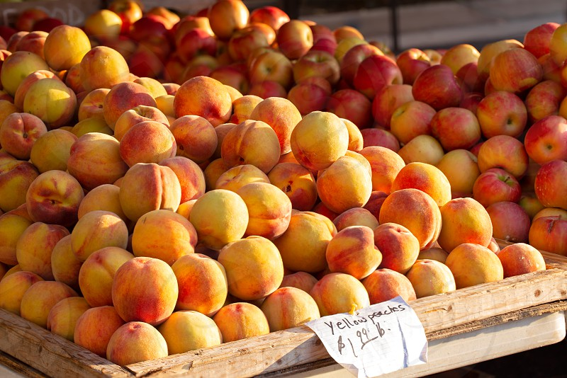 Late summer yellow peaches and red apples at a local farmer's market photo