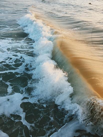 Love the salty air  photo