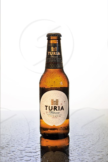 A bottle of cold beer with sweat drops on it photo