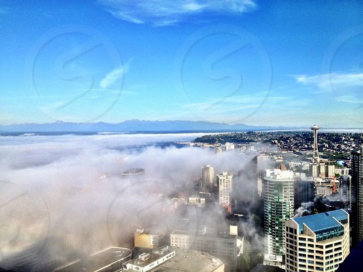 Fog Over City Sky Rise Buildings photo