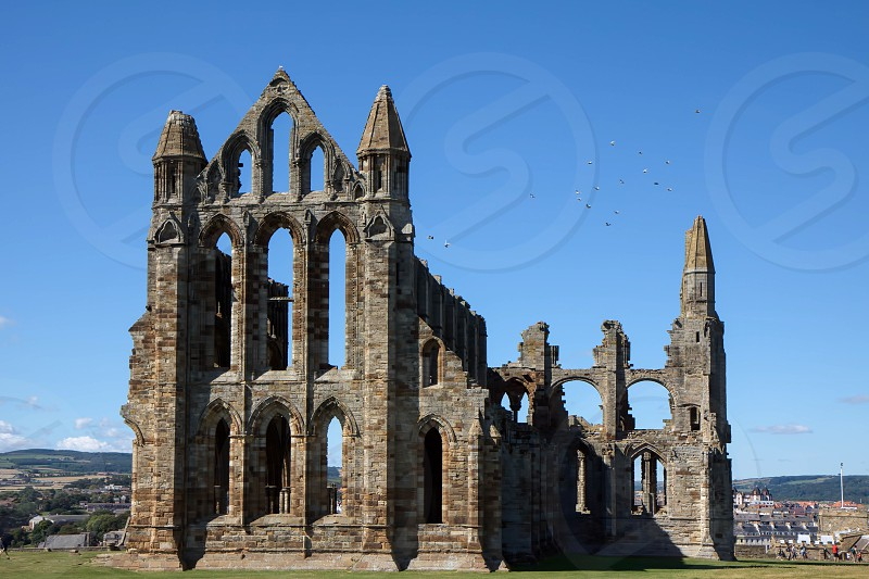 View of Whitby Abbey Ruins photo