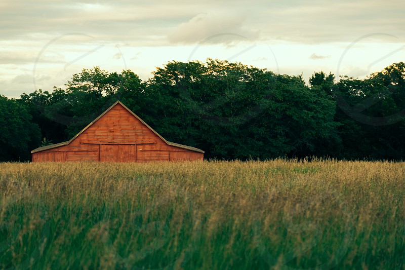 brown wooden house on green grassy field photo