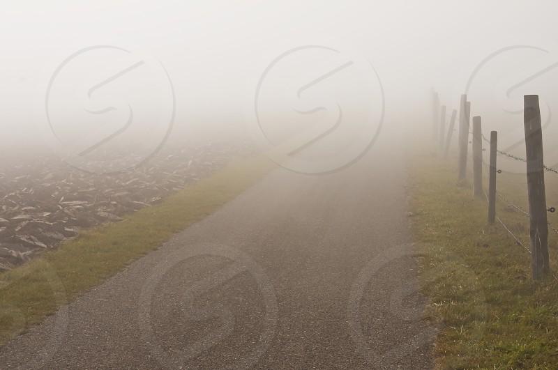 foggy day in autumn photo