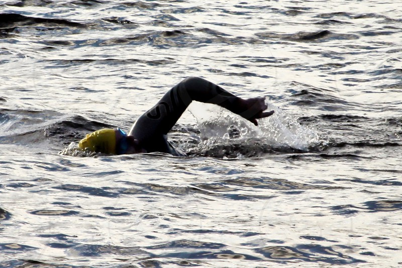 Wildswimmer making the waves in Lake Windermere Cumbria photo